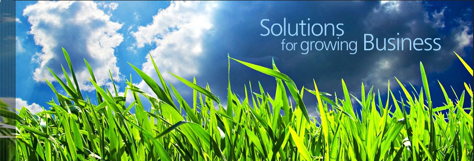 Web Development, Software Development, Web Design Company, Website Development, Web Design, Web Design India, Web Designing Company, Web Designing Services, Web Development India, Top Web Design, Website designing Ludhiana, Website Designing Company in Punjab, Best Web Designing Company, Website Designing Company, Website Designing Company in ludhiana